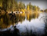 Kyrkösjärven luontopolulla
